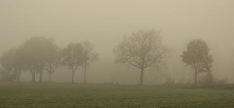 Nebelgrau