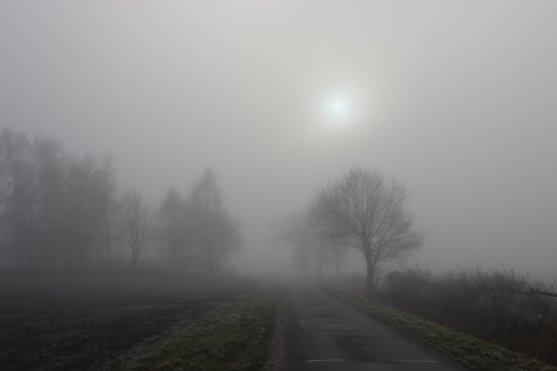 Nebel 01185